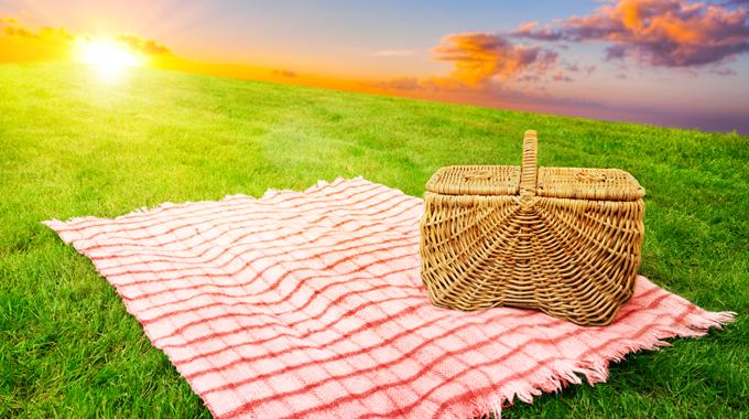 Realash_picnic-4
