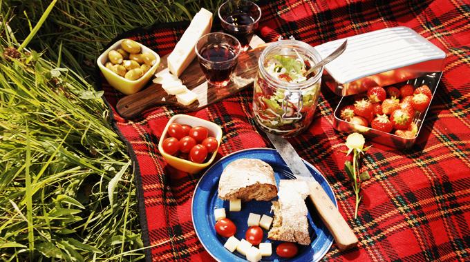 Realash_picnic-6