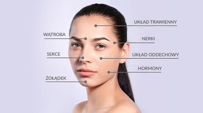 Układ mapy twarzy